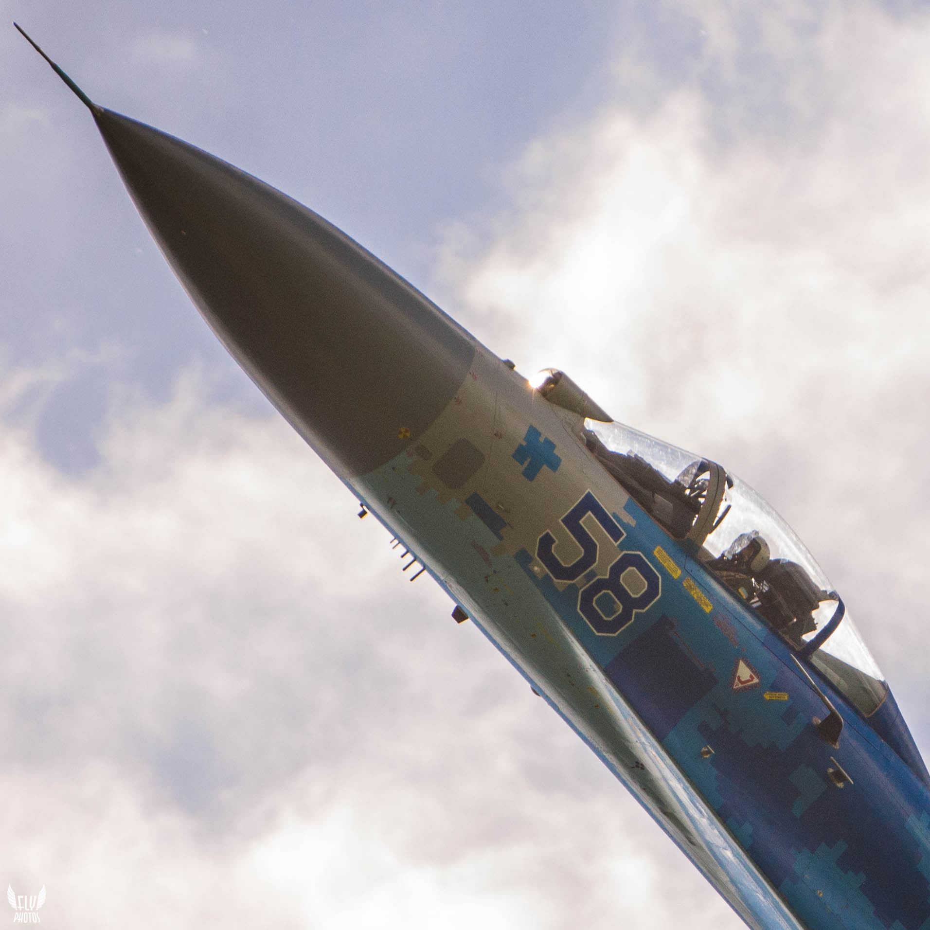 Photo of the day: Sunny flanker on Danish sky